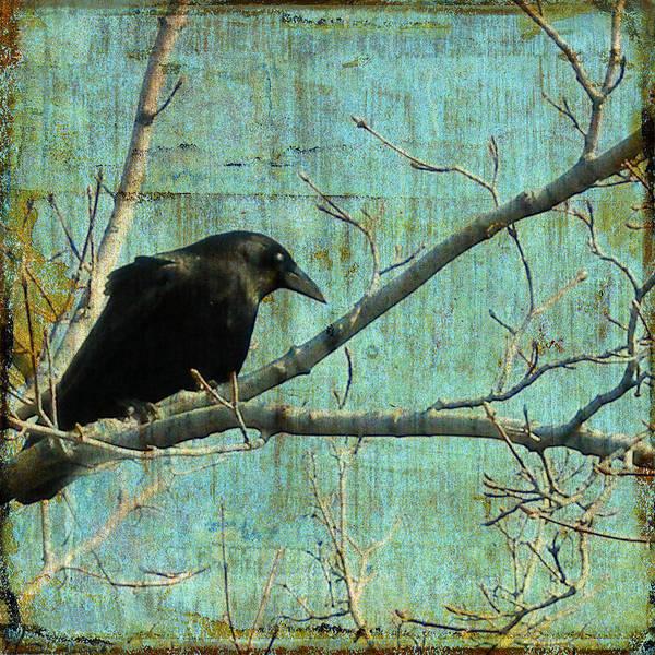 Digital Image Digital Art - Retro Blue - Crow by Gothicrow Images