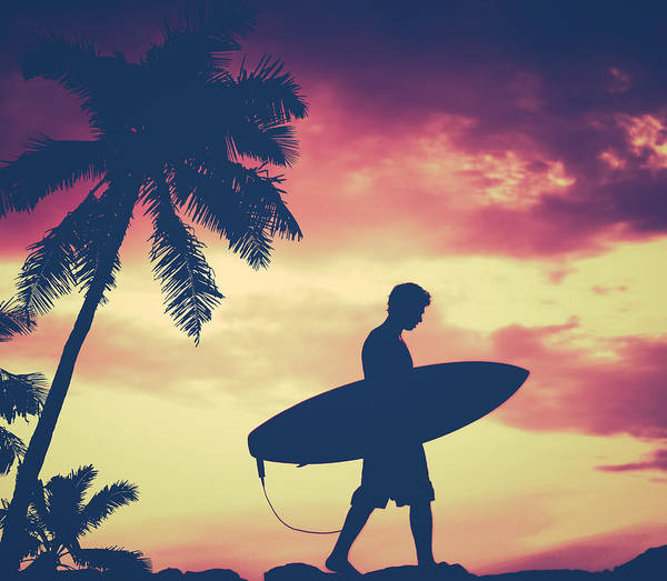 Watersports Photograph - Retro Palm Tree And Surfer by Mr Doomits
