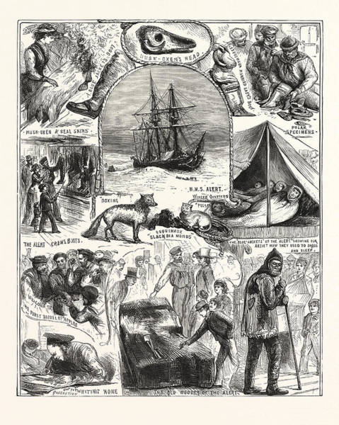 Wall Art - Drawing - Return Of The Arctic Expedition, Sketches On Board by New Zealand School