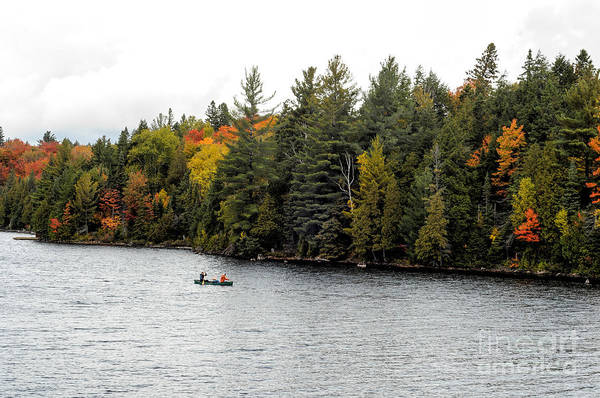 Photograph - Returning From A Canoe Trip by Les Palenik