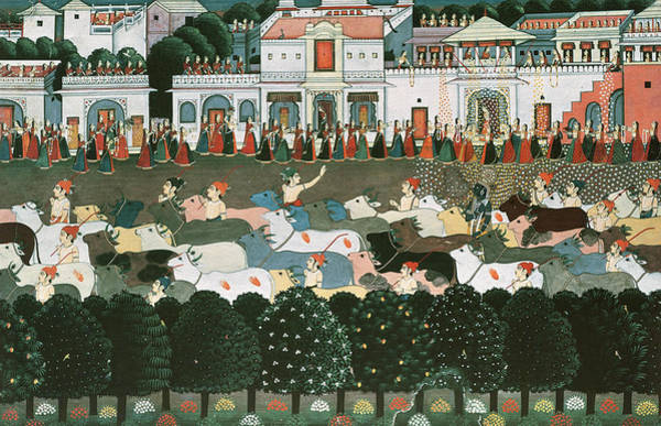 Procession Photograph - Returning To The Cowshed Gouache On Paper 8lheure Du Retour A Letable; by Indian School