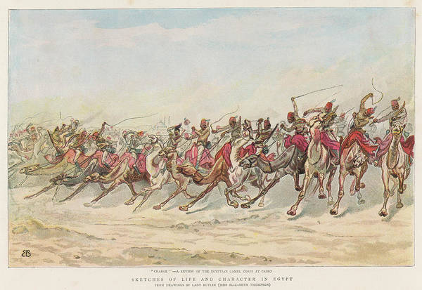Dust Drawing - Review Of Egyptian Camel Corps  At Cairo by  Illustrated London News Ltd/Mar
