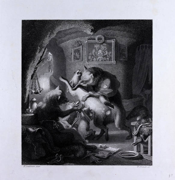 Reynard Wall Art - Drawing - Reynard And Lampe by English School