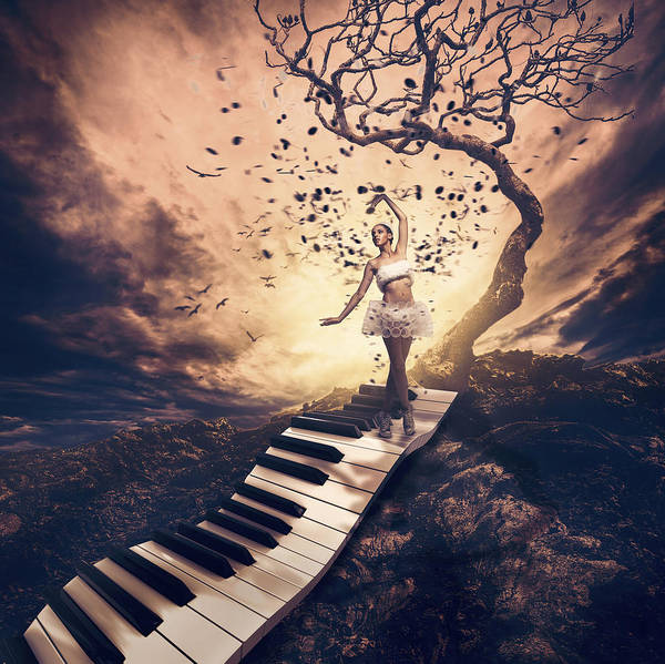 Piano Photograph - Rhapsody by Jackson Carvalho