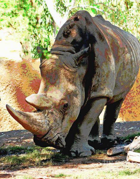 Photograph - Rhino Buddy by Larry Oskin