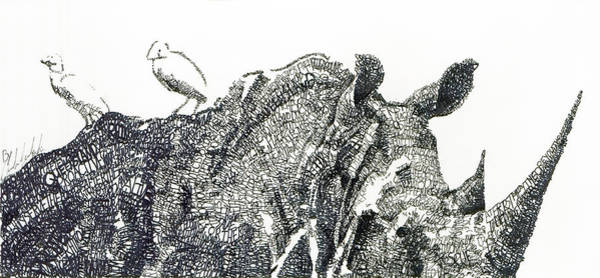 South Drawing - Rhino by Michael Volpicelli