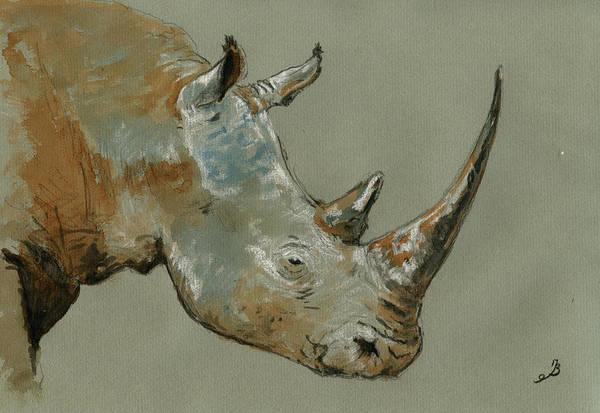 African Wildlife Painting - Rhino Study by Juan  Bosco