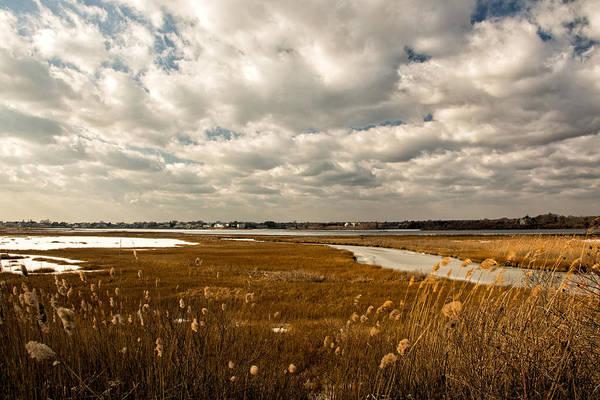 Photograph - Rhode Island Marshes 1 by Nancy De Flon