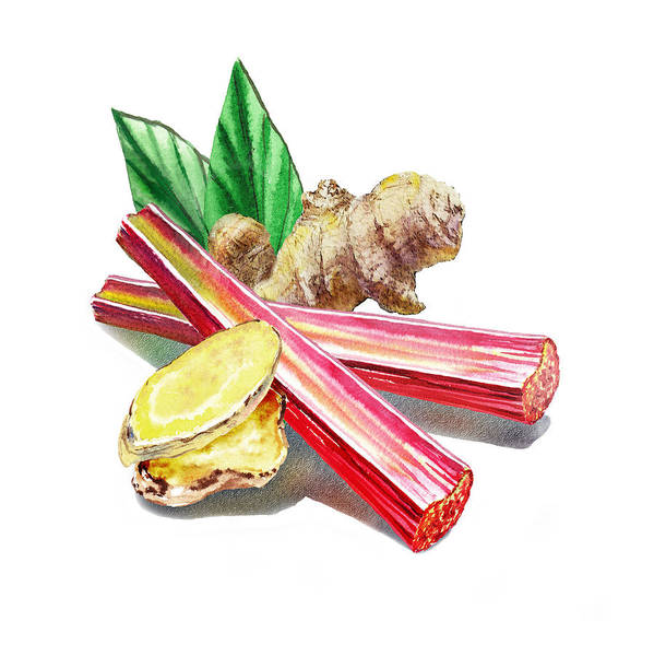 Wall Art - Painting - Rhubarb And Ginger by Irina Sztukowski