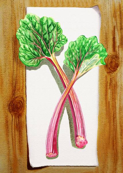 Yummy Painting - Rhubarb Tasty Botanical Study by Irina Sztukowski