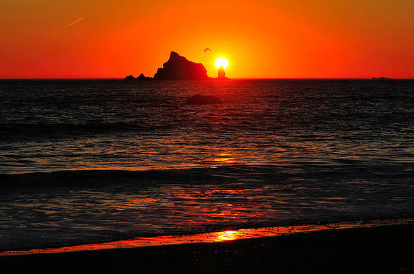 Photograph - Rialto Beach Sunset by Greg Norrell