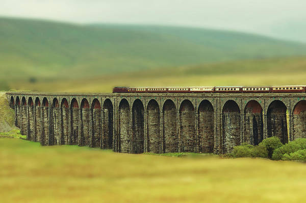 Head Tilt Photograph - Ribblehead by Jon Parkes Photography