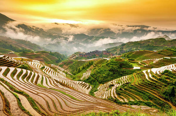 Indigenous People Photograph - Rice Terraces by Luxizeng