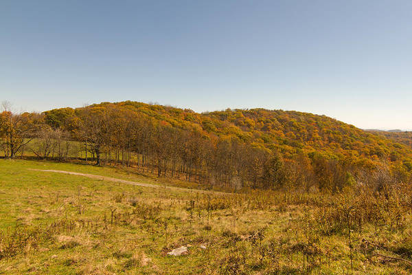 Photograph - Rich Mountain Autumn by Paul Rebmann