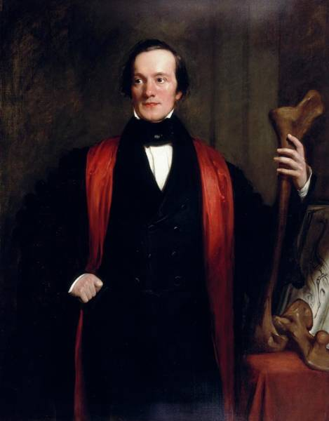 Comparative Wall Art - Photograph - Richard Owen by Natural History Museum, London/science Photo Library