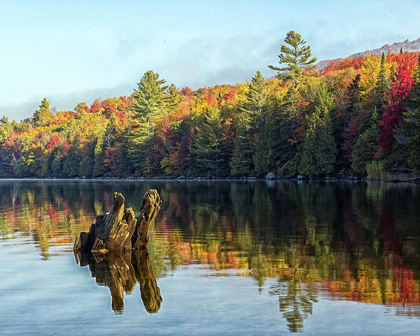 Photograph - Ricker Pond Fall Reflections by John Vose