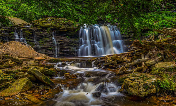 Photograph - Ricketts Glen by Torrey McNeal