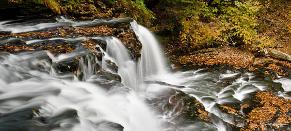 Photograph - Ricketts Glen - On Top Of The Fall by Crystal Wightman