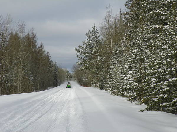 Aroostook County Photograph - Rider On The Trail by Gene Cyr