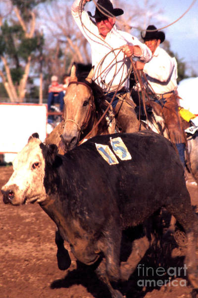 Photograph - Riding And Roping by Thomas R Fletcher