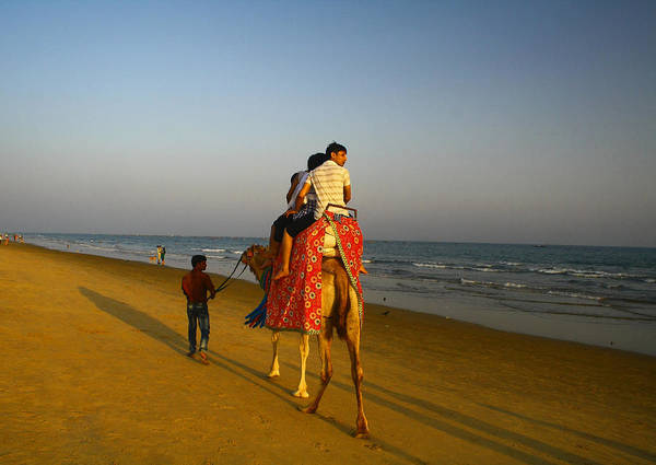 Photograph - Riding Off Into The Sunset by Arkamitra Roy