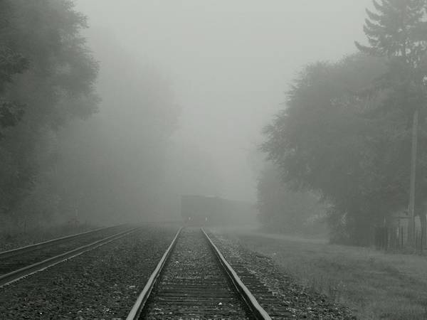 Photograph - Riding The Rails by Wild Thing