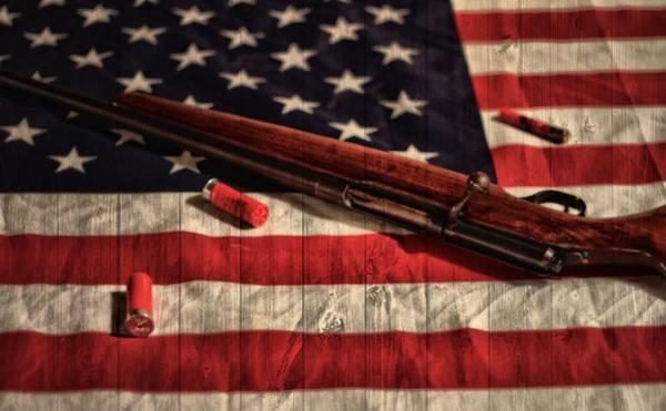 Door To Door Photograph - Rifle And Flag by Dan Sproul