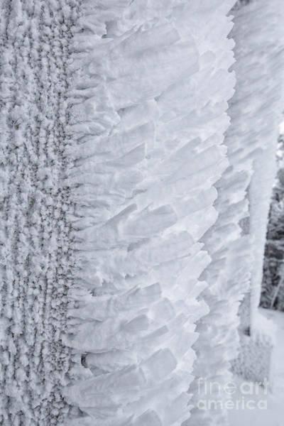 Photograph - Rime Ice - Cannon Mountain New Hampshire Usa by Erin Paul Donovan