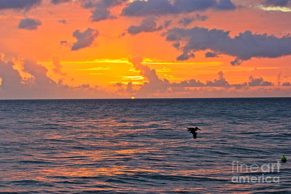 Photograph - Rincon Sunset by The Art of Alice Terrill