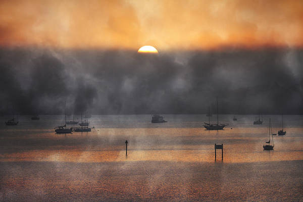 Fl Photograph - Ringling Misty Morning by Betsy Knapp