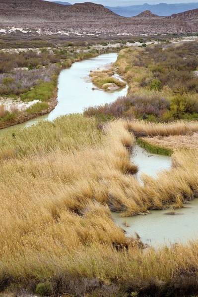 Chihuahuan Desert Photograph - Rio Grande River by Bob Gibbons/science Photo Library