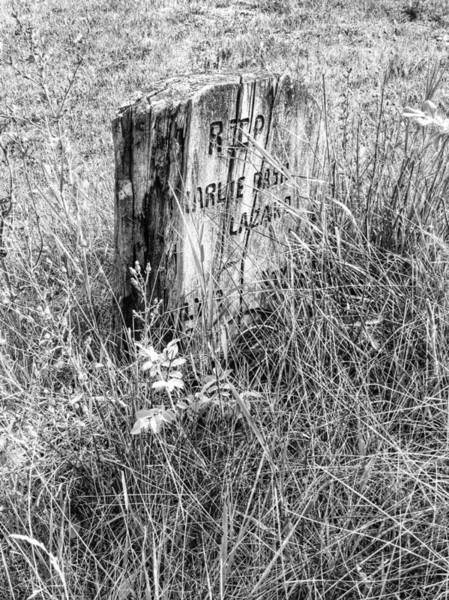 Indian Burial Ground Photograph - RIP by The Artist Project