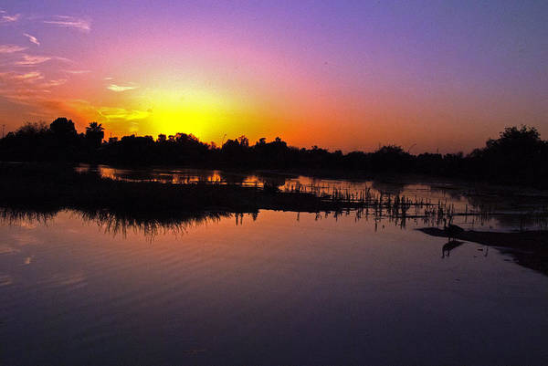 Photograph - Riparian Preserve Sunset by Tam Ryan