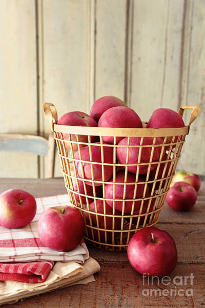 Photograph - Ripe Apples In Metal Basket by Sandra Cunningham