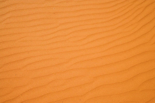 Backcountry Photograph - Ripples In Sand Dunes, Strzelecki by David Wall