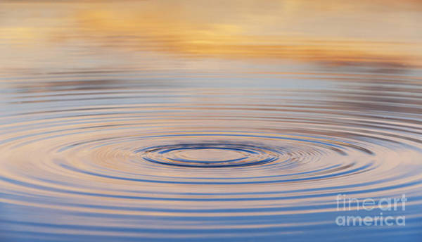 Wall Art - Photograph - Ripples On A Still Pond by Tim Gainey