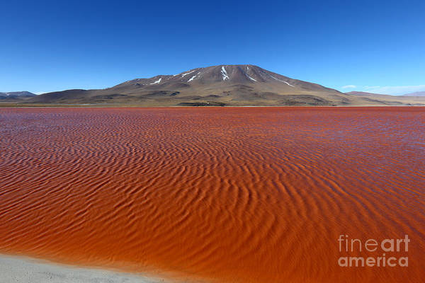 Photograph - Ripples On Laguna Colorada by James Brunker