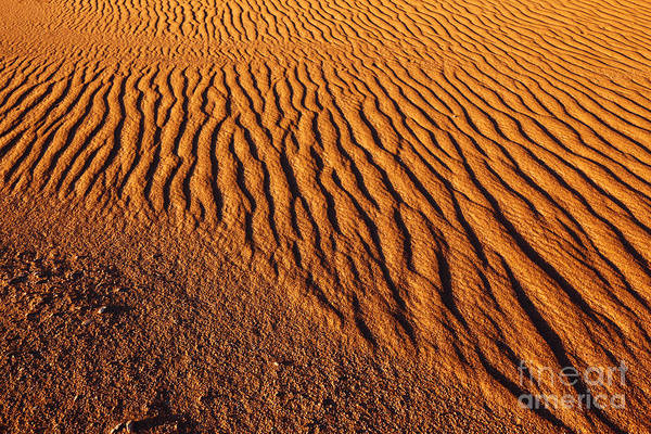 Photograph - Ripple Patterns In The Sand 2 by James Brunker