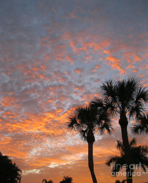 Rise And Shine. Florida. Morning Sky View Art Print