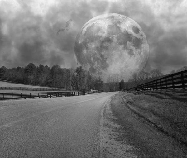 Moon Shine Wall Art - Photograph - Rise To The Occasion  by Betsy Knapp