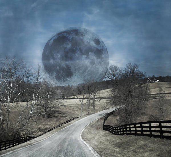 Super Moon Photograph - Rising To The Moon by Betsy Knapp