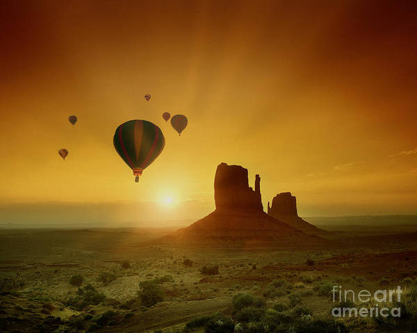 Photograph - Rising To The Sun by Edmund Nagele