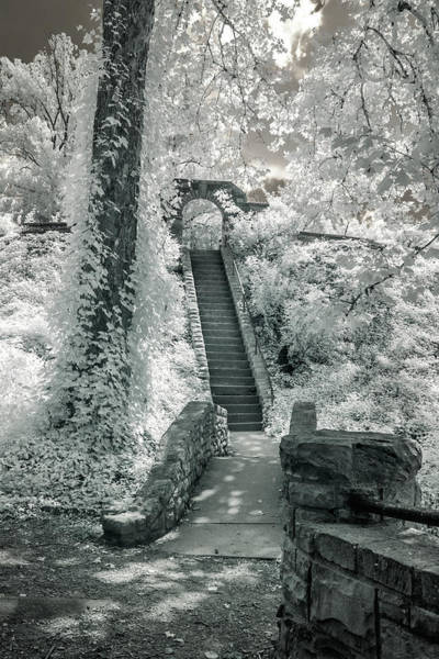 Photograph - Ritter Park by Mary Almond