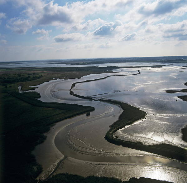 Snape Wall Art - Photograph - River Alde Estuary by Skyscan/science Photo Library
