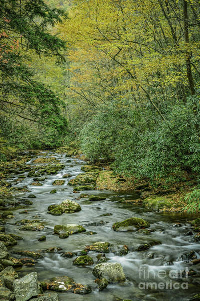 Photograph - River And Fall Color by David Waldrop
