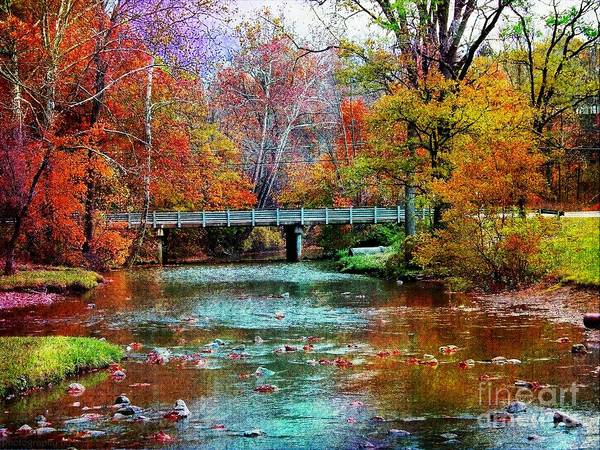 Photograph - River At Hinckley Reservation by Gena Weiser