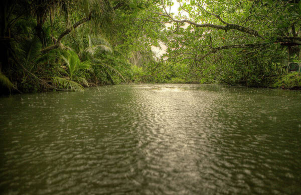Cahuita Photograph - River At The Entrance Of The Cahuita by Christophe Launay