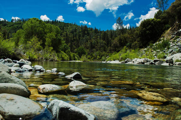 Yuba River Photograph - River Bottom by Along The Trail