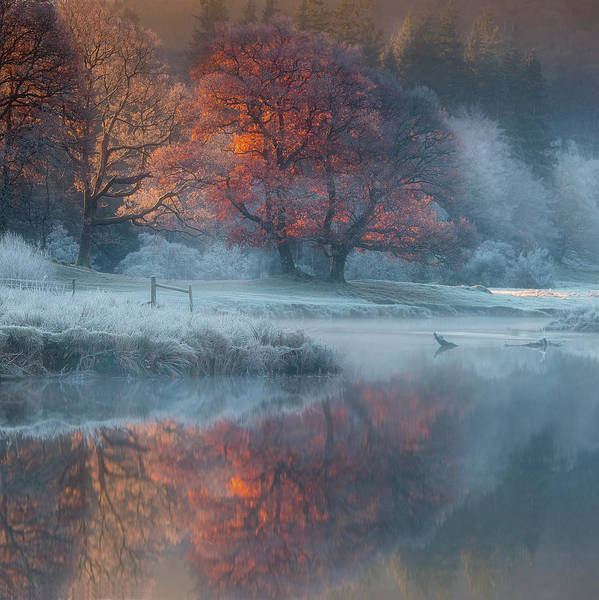 Seasonal Photograph - River Brathay by Wolfy