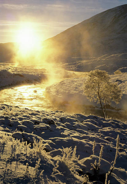 Birch River Photograph - River Clunie by Duncan Shaw/science Photo Library